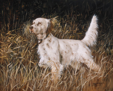 Mountain View Llewellin Setter Kennel